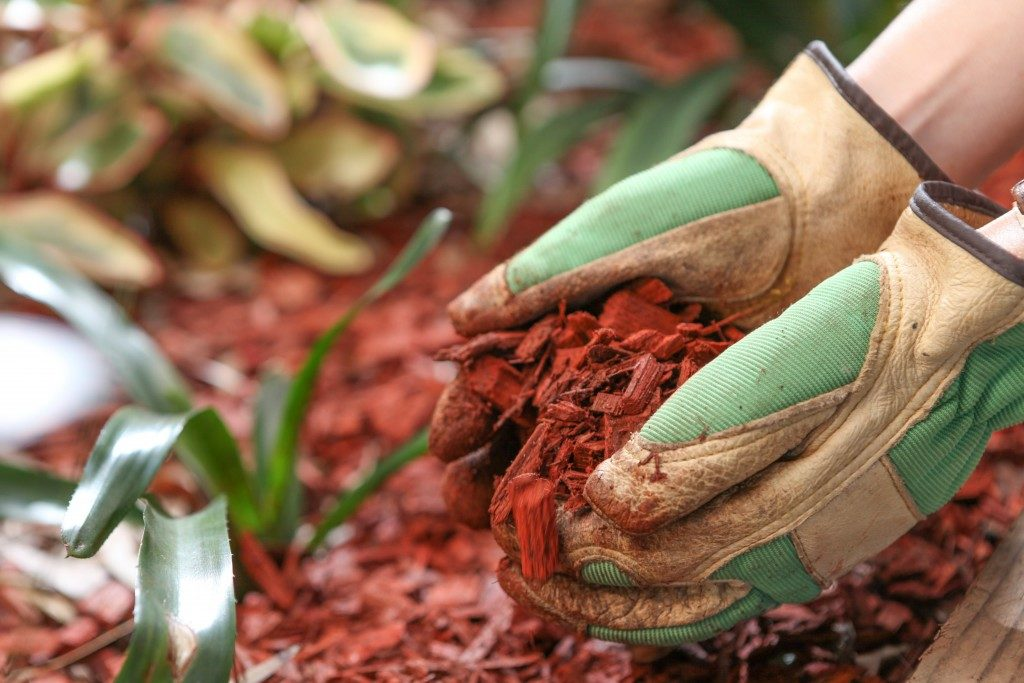 Mulch for gardening